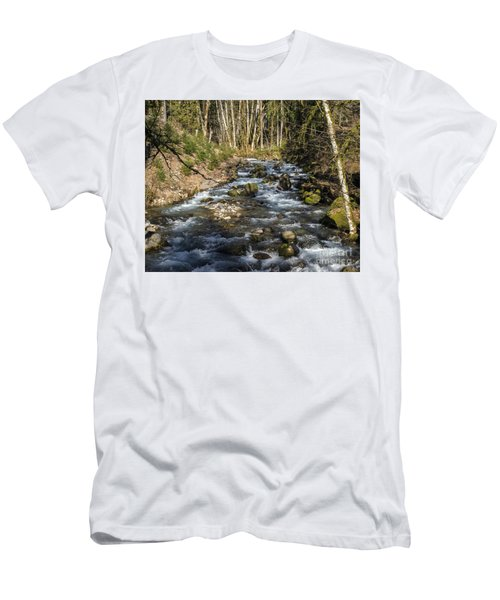 Views Of A Stream, Iv Men's T-Shirt (Slim Fit) by Chuck Flewelling
