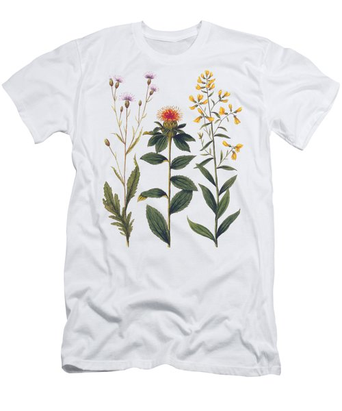 Vintage Botanical Wildflowers Men's T-Shirt (Athletic Fit)