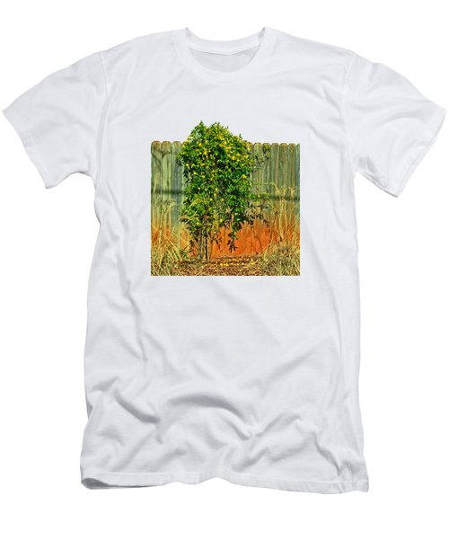 Wall Of Jasmine Men's T-Shirt (Slim Fit) by Larry Bishop