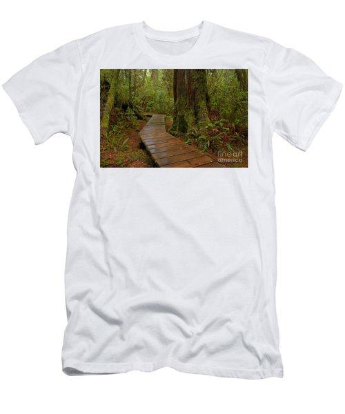 Wandering Through The Rainforest Men's T-Shirt (Athletic Fit)