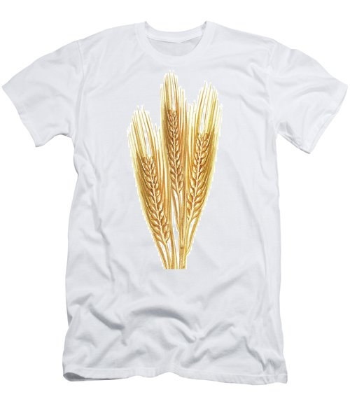 Men's T-Shirt (Athletic Fit) featuring the painting Watercolor Wheat Illustration by Irina Sztukowski