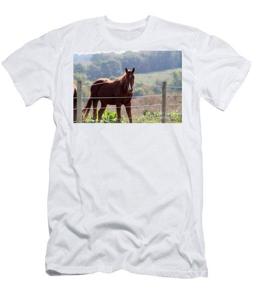 What? Men's T-Shirt (Athletic Fit)