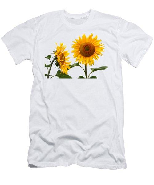 Whispering Secrets Sunflowers On White Men's T-Shirt (Athletic Fit)