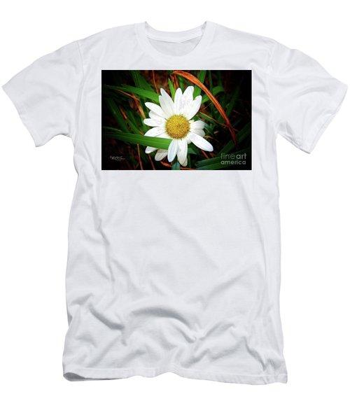 White Daisy Men's T-Shirt (Athletic Fit)