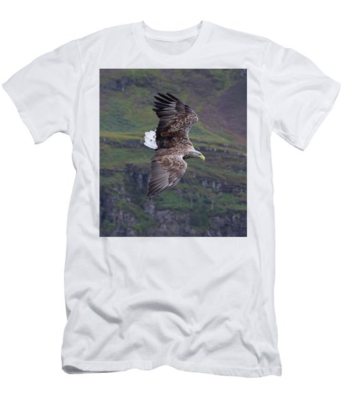 White-tailed Eagle Banks Men's T-Shirt (Athletic Fit)