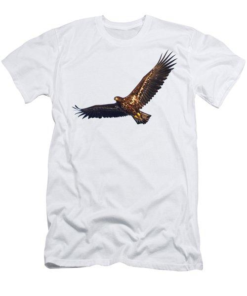 Whitetailed Eagle Transparent Men's T-Shirt (Athletic Fit)