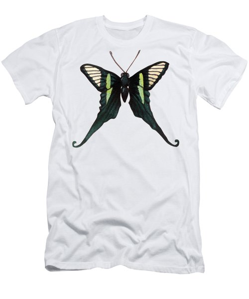 Winged Jewels 3, Watercolor Tropical Butterfly With Curled Wing Tips Men's T-Shirt (Athletic Fit)