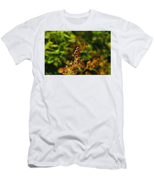 Wingo Butterfly Men's T-Shirt (Athletic Fit)