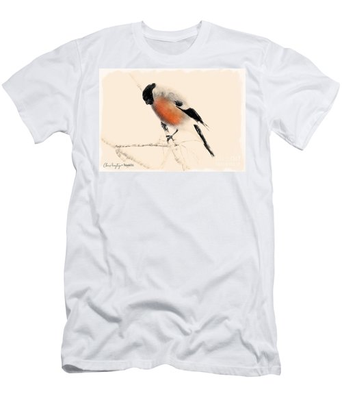 Winter Bullfinch Men's T-Shirt (Athletic Fit)