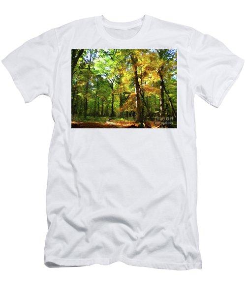 Wood Plank Trail Men's T-Shirt (Athletic Fit)