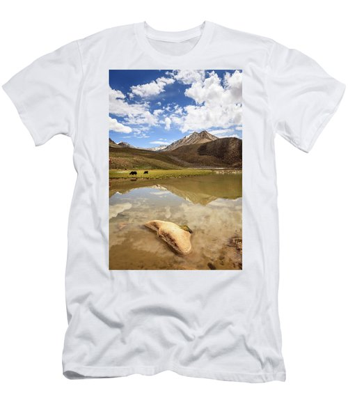 Yaks In Ladakh Men's T-Shirt (Athletic Fit)