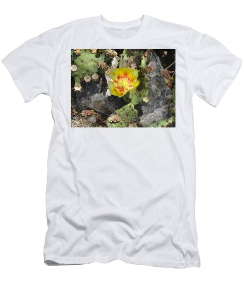 Yellow Cactus Flower Blossom Men's T-Shirt (Athletic Fit)
