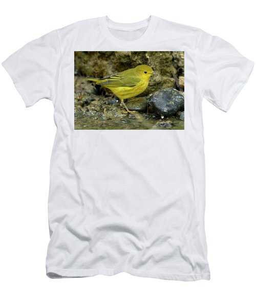 Men's T-Shirt (Slim Fit) featuring the photograph Yellow Warbler by Doug Herr
