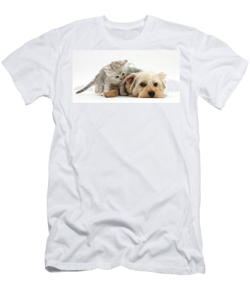 Yorkshire Terrier And Tabby Kitten Men's T-Shirt (Athletic Fit)