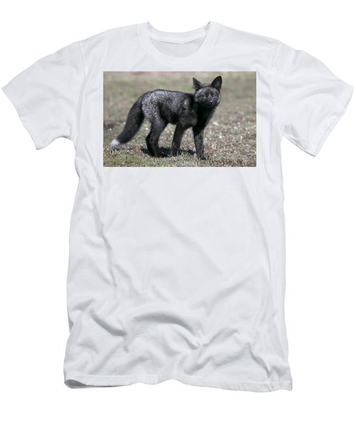 Curious Men's T-Shirt (Slim Fit) by Elvira Butler