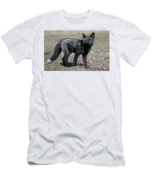 Men's T-Shirt (Slim Fit) featuring the photograph Curious by Elvira Butler