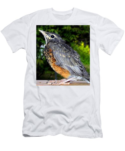 Young American Robin Men's T-Shirt (Athletic Fit)