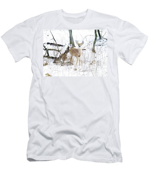 Young Doe And Spring Snow Men's T-Shirt (Athletic Fit)