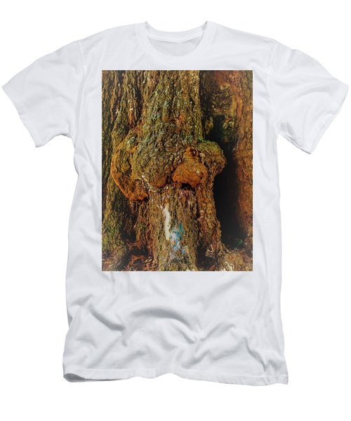 Z Z In A Tree Men's T-Shirt (Athletic Fit)