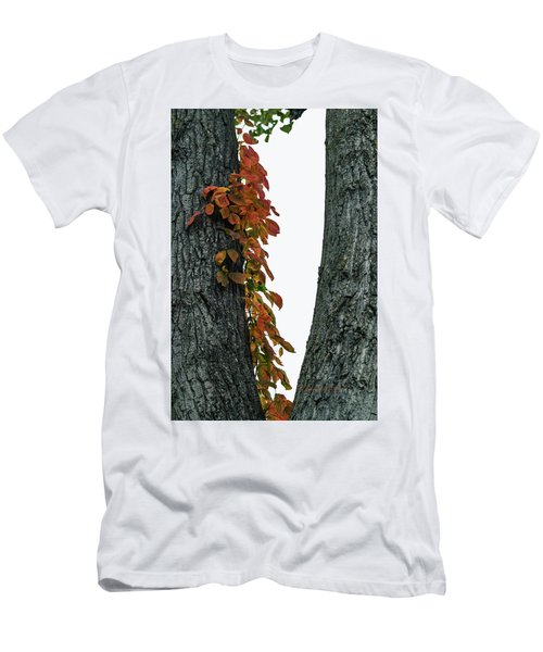 Men's T-Shirt (Athletic Fit) featuring the photograph Autumn Leaves by Edward Peterson