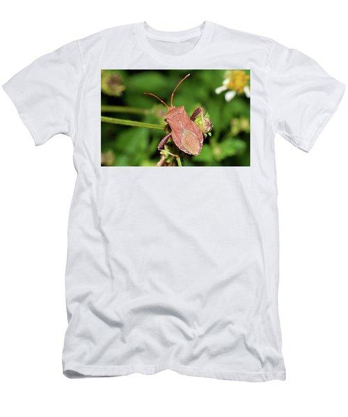 Leaf Footed Bug Men's T-Shirt (Athletic Fit)