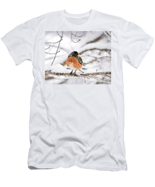 American Robin In The Snow Men's T-Shirt (Athletic Fit)