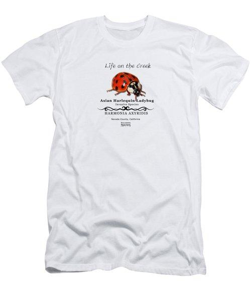Asian Harlequin Ladybug Men's T-Shirt (Athletic Fit)