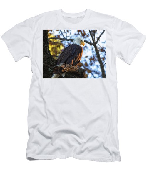 Men's T-Shirt (Athletic Fit) featuring the photograph Bandit by Lori Coleman