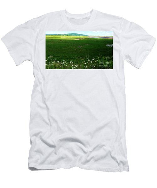 Bay Of Fundy Landscape Men's T-Shirt (Athletic Fit)