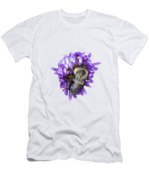 Bee 2018-1 Isolated Men's T-Shirt (Athletic Fit)
