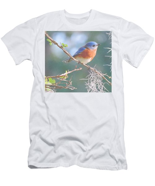 Bluebird In Dixie  Men's T-Shirt (Athletic Fit)