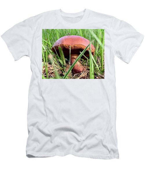 Bug On Boletus Edulis Men's T-Shirt (Athletic Fit)