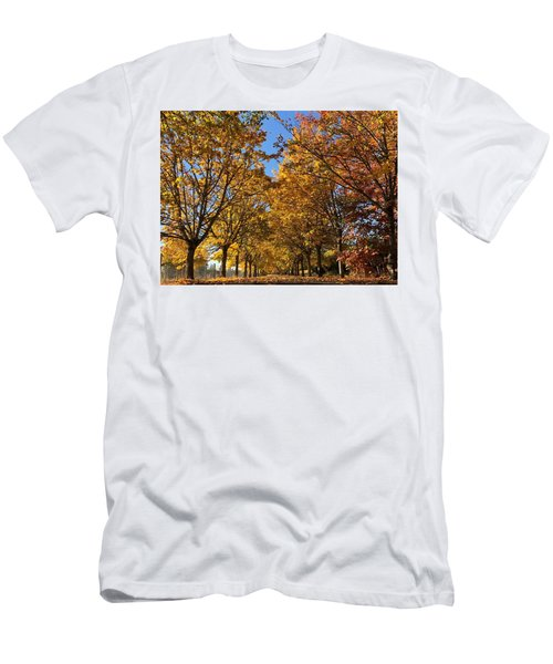 Canopy Of Color Men's T-Shirt (Athletic Fit)