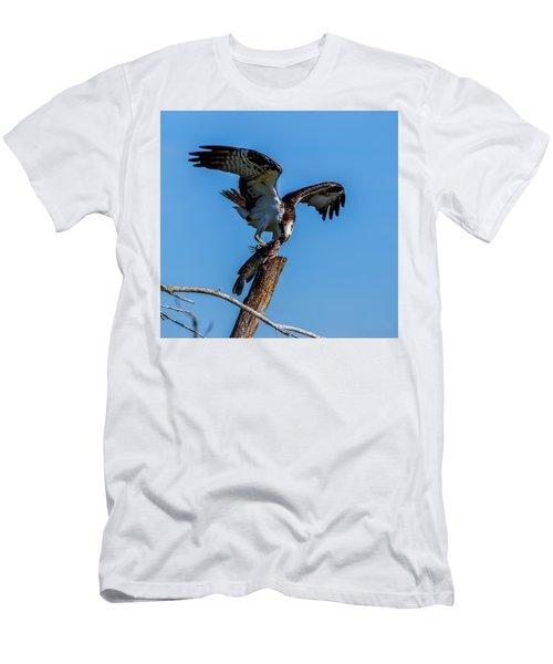 Catfish, My Favorite Men's T-Shirt (Athletic Fit)