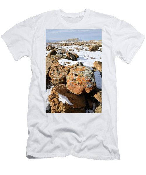 Colorful Lichen Covered Boulders In Book Cliffs Men's T-Shirt (Athletic Fit)