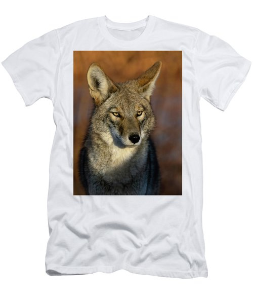 Coyote 1 Men's T-Shirt (Athletic Fit)