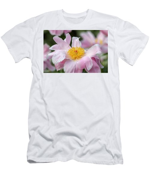 Delicate Pink Peony Men's T-Shirt (Athletic Fit)
