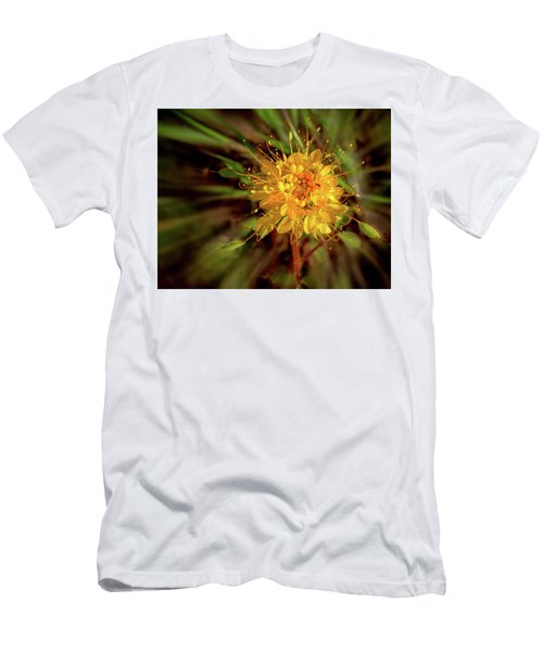 Exploding Wildflower Men's T-Shirt (Athletic Fit)