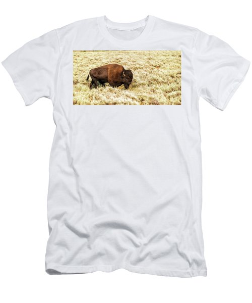 Roam Free Men's T-Shirt (Athletic Fit)