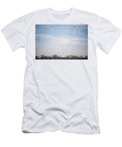 Geese In The Flyway Men's T-Shirt (Athletic Fit)