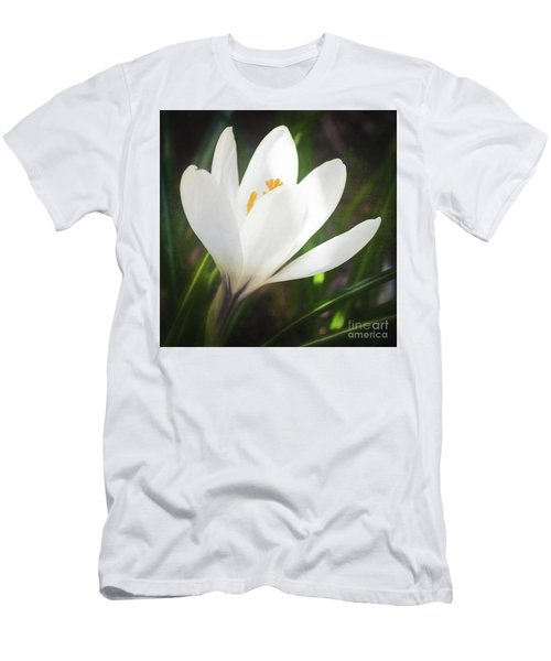 Glowing White Crocus Men's T-Shirt (Athletic Fit)