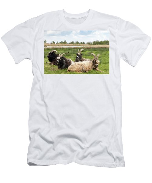 Men's T-Shirt (Athletic Fit) featuring the photograph Goats  by Anjo Ten Kate