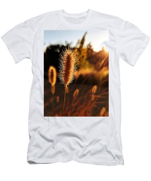 Golden Wildgrass Men's T-Shirt (Athletic Fit)