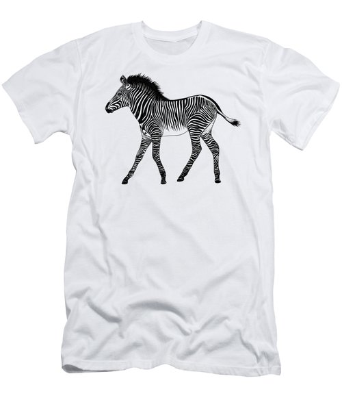 Grevy's Zebra Foal Men's T-Shirt (Athletic Fit)