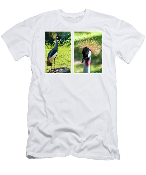 Grey Crowned Crane Gulf Shores Al Collage 8 Diptych Men's T-Shirt (Athletic Fit)