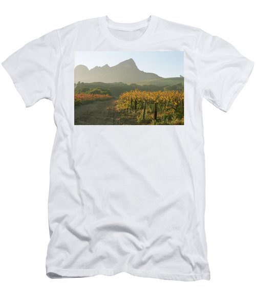Helderburg Vineyard Men's T-Shirt (Athletic Fit)
