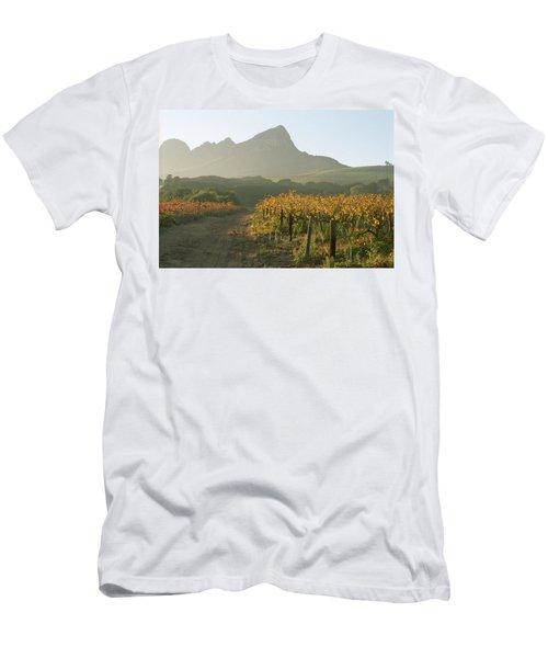 Helderburg Vineyard Men's T-Shirt (Athletic Fit)