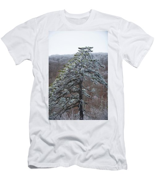Hoarfrost Gathers Men's T-Shirt (Athletic Fit)