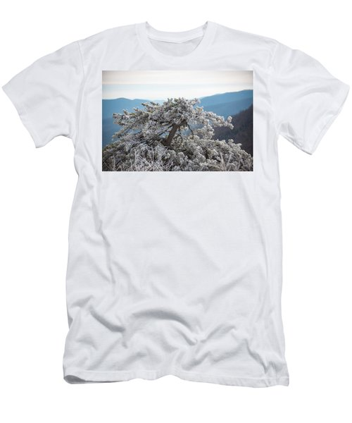 Hoarfrost In The Blue Ridge Mountains Men's T-Shirt (Athletic Fit)