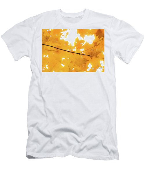 Honey Colored Happiness Men's T-Shirt (Athletic Fit)